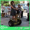 fora de Road Auto Balancing Electric Chariot