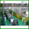 Tipo fornace industriale d'indurimento continua del rullo della fornace della fornace della fascia della maglia