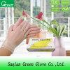 Дешевые перчатки перчаток винила CE