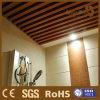 Rentable, imperméabilisant, plafond de WPC pour la salle de bains