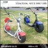 Самокат 800W горячего города кокосов надувательства электрический, 48V, 8.8ah с 2 колесами для взрослых
