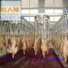 Linha da matança no processamento de carne na casa das aves domésticas
