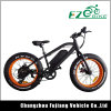 Fahrrad-Fahrrad 20 Zoll-Pocket fettes Gummireifen-Dubai-E