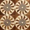 Het ronde Medaillon van het Mozaïek van de Vloer