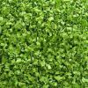 Natürlicher entwässerter Schalotte-Grün-Ring