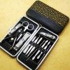 De Reeks van de manicure & van de Pedicure (spijker-0001)