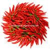 Красный порошок Capsanthin паприки