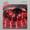 Luz de tira del LED (SL-F1214R60)