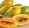 Poeder van het Vruchtesap van de Papaja van 100% het Zuivere