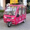 Дистанционная роскошь пассажира польностью Enclosed моделирует трицикл