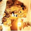 львы 100%Polyester и леопарды Pigment&Disperse напечатали ткань для комплекта постельных принадлежностей