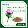 Выдержка Thistle молока высокого качества естественные/порошок выдержки Thistle молока/Silymarin/Silybin