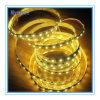 Qualité flexible de bande du prix de gros DEL Flexi de l'éclairage 12V/24V 6W /M 60LEDs/M de la fabrication DEL d'or