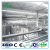 Ligne pasteurisée automatique complète de production laitière de vente chaude