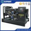 engine de 24kw 30kVA Yangdong Genset diesel en Chine