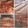 Wire di rame Scrap e Cathodes