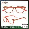Frame van uitstekende kwaliteit Sr6059 van de Glazen van het Oogglas van Eyewear van de Voorraad van de Acetaat het In het groot Optische