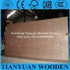 madera contrachapada comercial 18m m de Bintangor Okoume de la base del álamo del grado de los muebles de 1220*2440m m