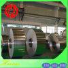 Constructeur mou de feuille de magnésium de plaque de magnésium d'Az31b Az61A Az91d 0.5mm-300mm