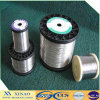 0.7mm-1.2mm Soft Binding Wire Alambre Galvanizados (XA-GIW1)
