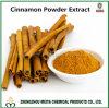 ポリフェノール5% - 30%およびフラボン10%-20%が付いている桂皮の粉のエキス