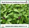 Extrato santamente do pó de Basilicum do Ocimum da manjericão com ácido de Ursolic