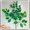 Fogli di plastica molli del Ficus della mano artificiale