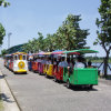 Tren del adulto y del viaje del parque de atracciones de los cabritos