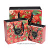 Bolsa de papel de lujo de las compras de la alta calidad con la manija de la cinta