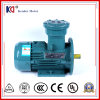 AC de Explosiebestendige Motor van de Fase met Uitstekende kwaliteit