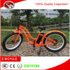 Bicicleta elétrica fêmea aprovada do OEM do CE com 26 de  o pneu gordo *4.0 MTB para a venda