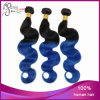Virgin Brazilian Body Wave Two Tone Ombre Hair Extension