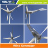 800W Permanent Magnet Motor Wind Generator