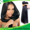 Prolonge péruvienne de la meilleure qualité de cheveux humains de cheveu de Vierge de type neuf en gros