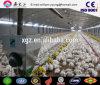 La Camera di pollo della struttura d'acciaio/pollame prefabbricati alloggia (JW-16226)