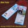 China Lápiz Lápiz paquete de plástico caja de regalo para regalo