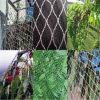 HDPEのプラスチック網の温室のための反鳥の網