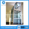 Piccolo elevatore domestico di vetro della villa dell'elevatore di capienza di caricamento