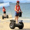중국 차량 Ecorider 전기 스쿠터를 균형을 잡아 2015년 각자