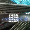 Automotive Pk Belt, com nervuras V Belt, correia dentada (5pk995)