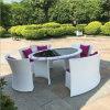 Rota al aire libre del PE del balcón del jardín del ocio moderno blanco que cena el conjunto