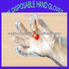 PlastikDisposable PET Gloves für Food Safe Contact