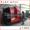 Nuevo torno diseñado del CNC para el molde paquistaní del neumático (CK61160)