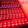 De ultra Heldere LEIDENE OpenluchtIP65 Staaf van Tricolor, 1 Meter 24 W LEDs