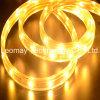 la lista flessibile ad alta tensione della striscia di 5050SMD LED illumina IP68 220V-AC