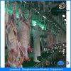 De Machines van het Huis van de Slachting van Halal van de Schapen van Ce in Slachthuis