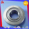 Fábrica de rolamento de rolo do elevado desempenho Nast20 sem ruído