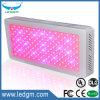 Hydroponics赤く青い紫色カラー正方形の形220-230W LEDはライトを育てる