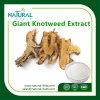 Riesiger Knotweed Auszug, 99% Polydatin, weißer Resveratrol Pflanzenauszug