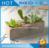 Kundenspezifische rustikale hölzerne Blumen-Pflanzer-Potenziometersucculent-Innenpotentiometer